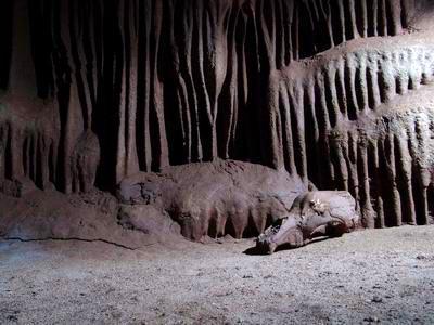 Medve-barlang